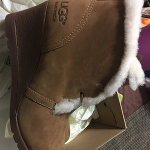 UGG Shoes - New ugg boots